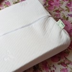 Latex Material Soft Pillow with Air Pockets, 40x58cm with protective covers